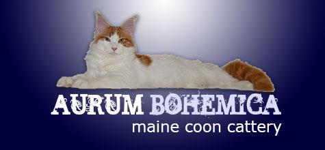 aurum-bohemica.cz